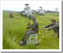 военный косец траве копец